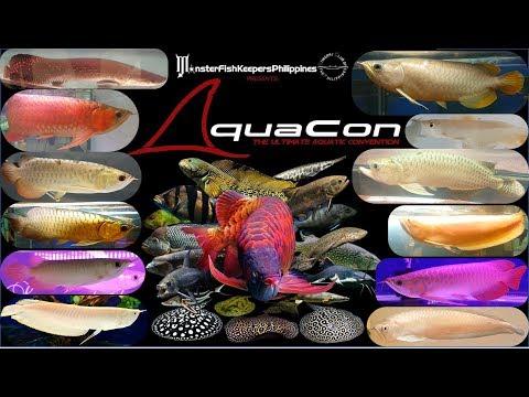 Aquacon 2017