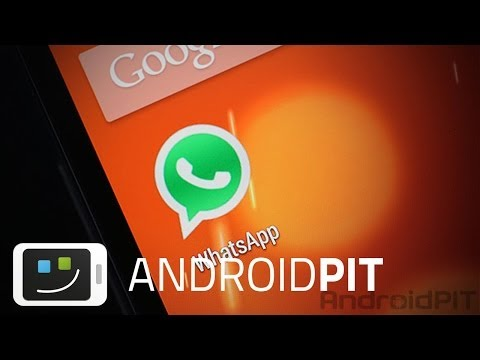 How to get all WhatsApp contacts to show [HOW TO]