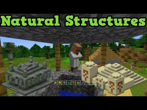 All Minecraft Structures
