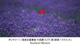 幸せな気分になれるクラシック名曲集・Becoming a Happy Mood Classical Music Collection(長時間作業用BGM)