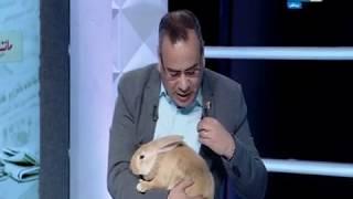 مانشيت القرموطي | جابر القرموطي يظهر بأرنب مرشح الانتخابات الرئاسية علي الهواء