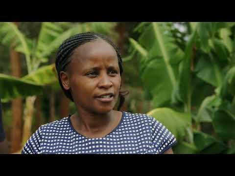 Shamba Chef Sn 01 - Ep 12 Mama Lillian, Murang'a (English)
