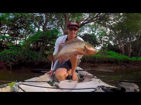 Dirty Water Mangrove Jack Fishing!! (Kayak Fishing)