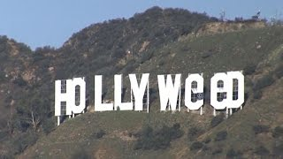 hollyweed Sign A Throwback To Political Activism