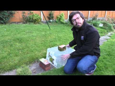 How to make a hedgehog feeding station