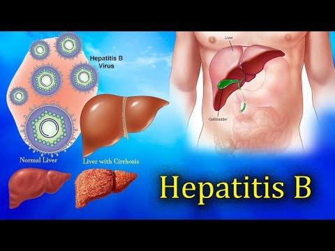 Hepatitis B ,Liver Function test Harib Diagnostic lab
