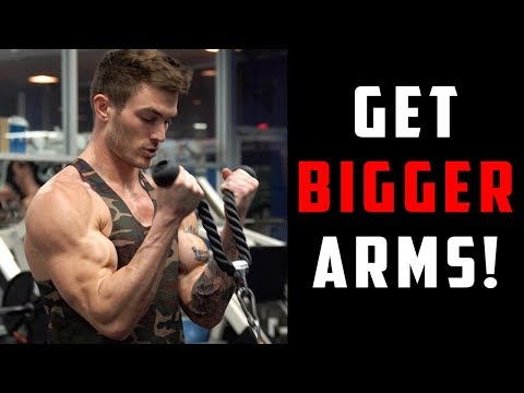 V Shred | Biceps & Triceps Workout | 8 Arm Exercises for Bigger Arms!