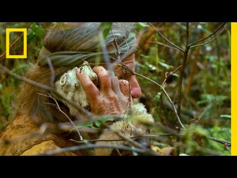 The Reinforcements |The Legend of Mick Dodge