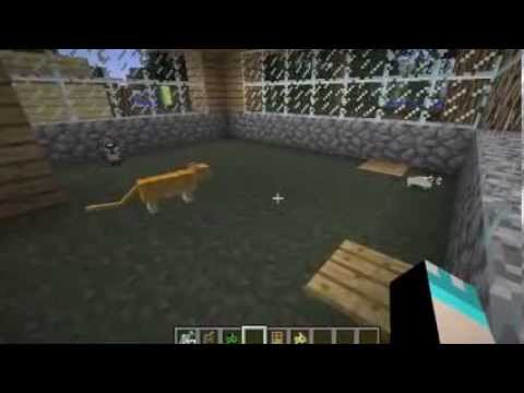 How to get a pet cat/kitten/ocelot in minecraft 1.6.2