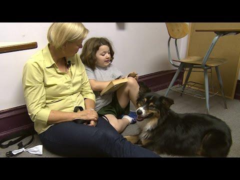 Australian Shepherd Helps Children Develop Reading Skills