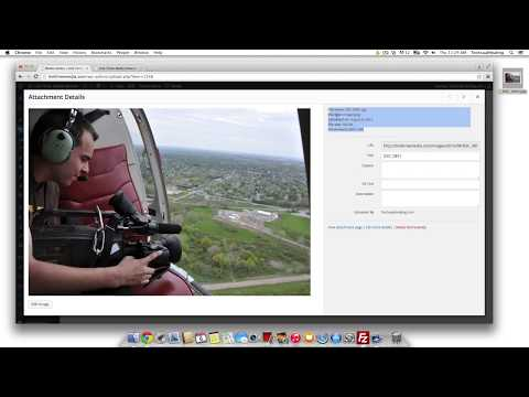 How to Resize Images in WordPress, Scale Image