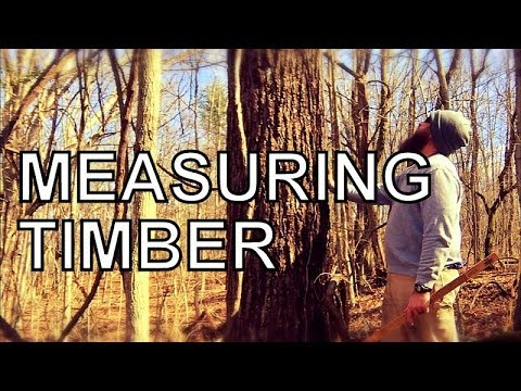 A MUST HAVE TOOL FOR HARVESTING TIMBER, SAWMILL BUSINESS