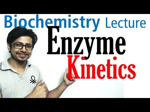 Enzyme kinetics vmax and km