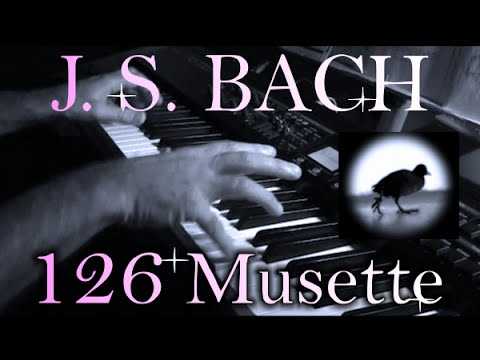 Johann Sebastian BACH: Musette in D major, BWV Anh. 126