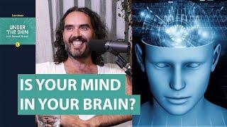 Russell Brand & Neuroscientist David Eagleman   Under The Skin Podcast