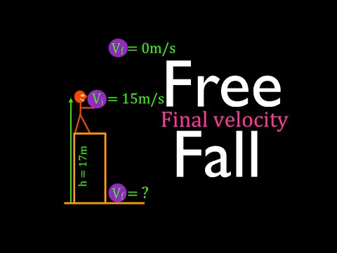 Physics, Kinematics, Free Fall (10 of 12) Final Velocity at Bottom