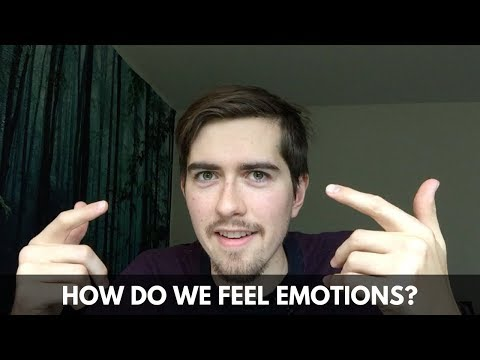 How do we feel emotions?