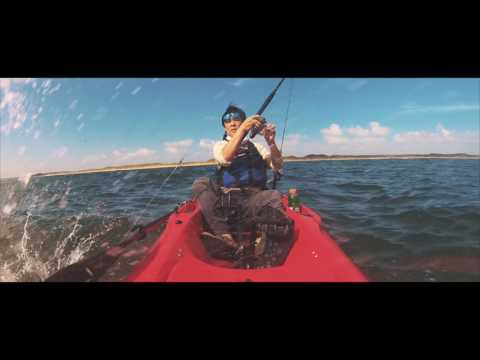 Beyond the Breakers (Padre Island National Seashore Fishing)