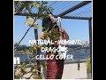 Natural -Imagine Dragons-Cello Cover