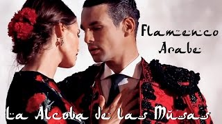 Tú y Yo (Flamenco Árabe Chill) Chico Castillo ft Anath Benais ◈ D&G