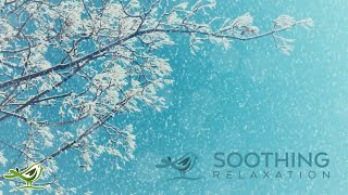 Relaxing Piano Music: Relaxing Music, Romantic Music, Beautiful Music, Soothing Sleep Music ★119