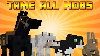 How To Tame Rabbits Ocelots Horses Wolves In Minecraft