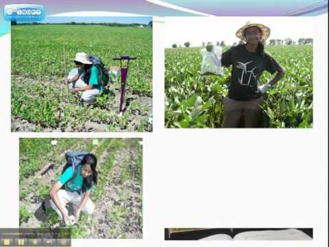 Remote Sensing in Agriculture