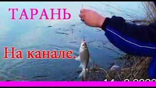 рыбалка в курганинске прогноз клева