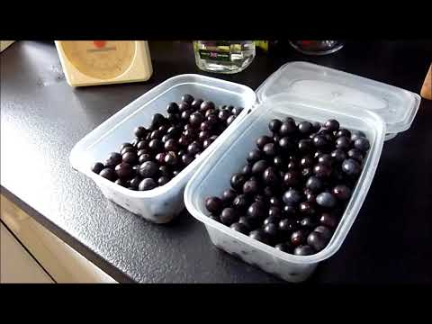 How to make Sloe Gin - A Winter Tonic/ Home Remedy