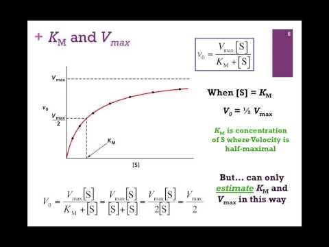 045-Kinetic Constants: Km & Vmax