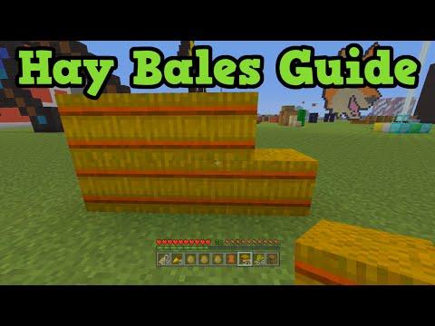 Minecraft Xbox 360 + PS3 - Hay Bales - Grow Horses Tutorial