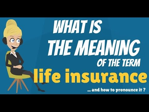 What is LIFE INSURANCE? What does LIFE INSURANCE mean? LIFE INSURANCE meaning & explanation