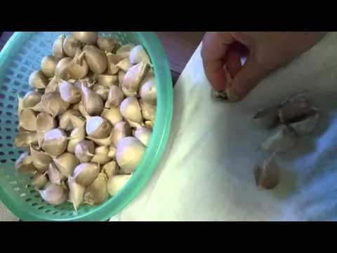 How to make Black garlic.