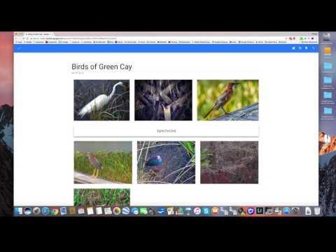 How To Create An Album In Google Photos