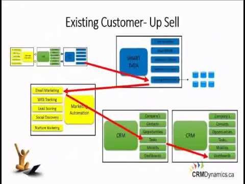 3 Insider Tips To Use Microsoft CRM To Increase Company Revenue (Webinar)