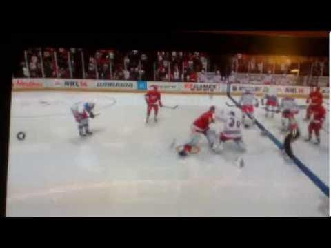 NHL 14 Goalie fight
