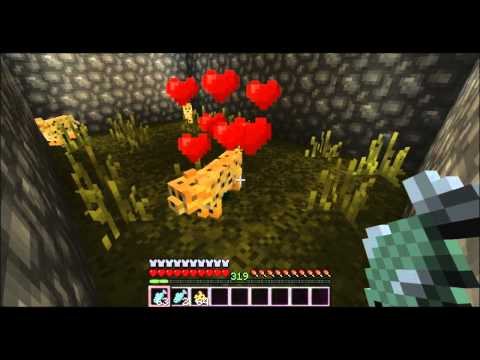 Taming an Ocelote in Minecraft