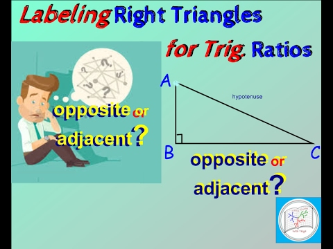 Trig Right Triangle: How to label Opposite and Adjacent sides