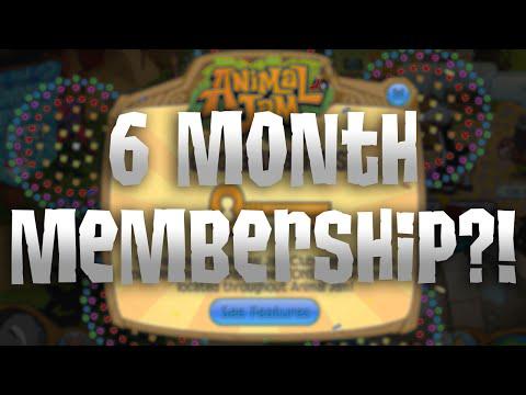 Proven Receives 6 Month Animal Jam Membership Code