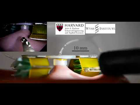 Pop-Up Tissue Retraction Mechanism for Endoscopic Surgery