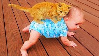 Funniest Baby And Cat #2 - Funny Baby Video