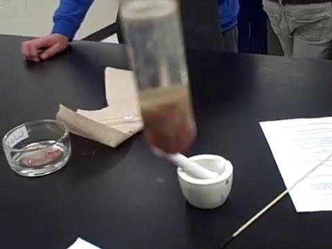 Catalase Enzyme Lab (Test 5: H2O2 + Denatured Catalase) Mr Pauller