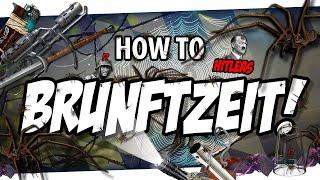 🎓 How to BRUNFTZEIT!