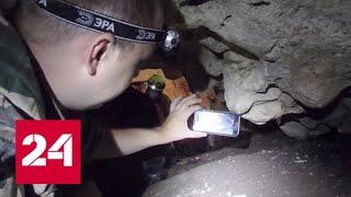 Download В Крыму обнаружен неизвестный вид микроорганизмов - Россия 24 Video