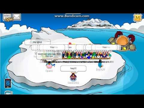 clones in club penguin!