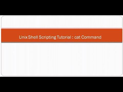 Unix Shell Scripting Tutorial  cat Command