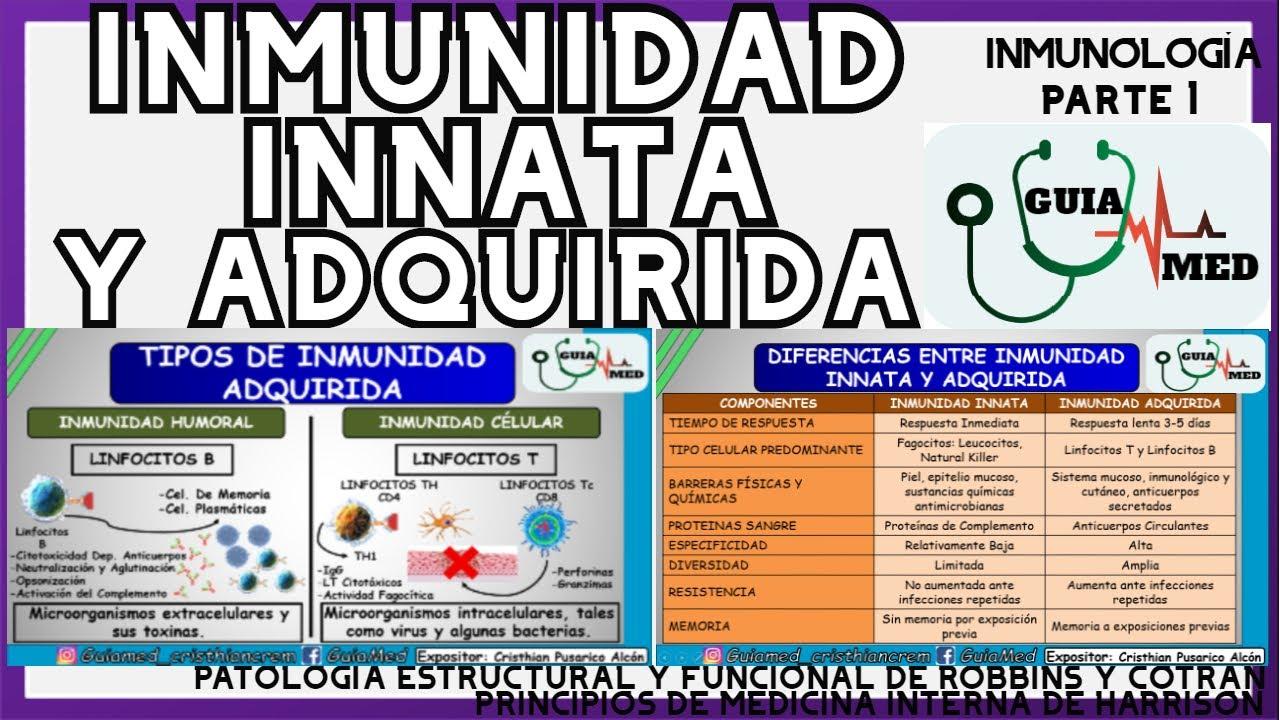 INMUNIDAD INNATA Y ADQUIRIDA INMUNOLOGÍA | GuiaMed