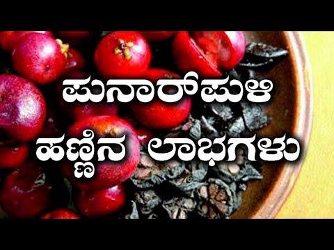 Top 10 Health Benefits Of Kokum Fruit | ಪುನರ್ ಪುಳಿ ಹಣ್ಣಿನ ಸೇವನೆಯಿಂದ ದೇಹಕ್ಕೆ ಸಿಗುವ 10 ಲಾಭಗಳು