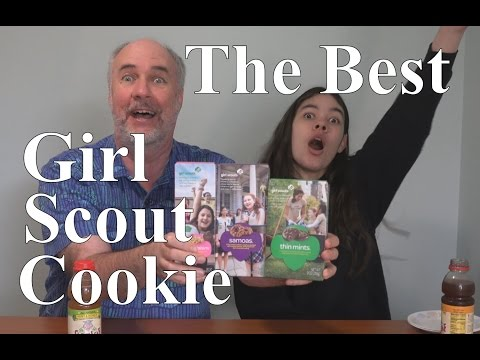 Your Last $4- Which Girl Scout Cookie to Buy? | RainyDayDreamers CC