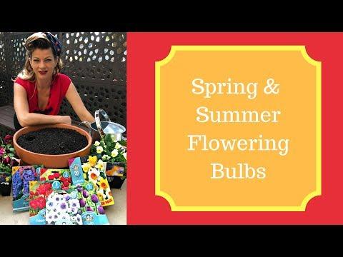 Spring and Summer Flowering Bulbs // The Gardenettes